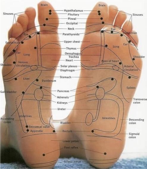 Массаж ног при беременности от отеков
